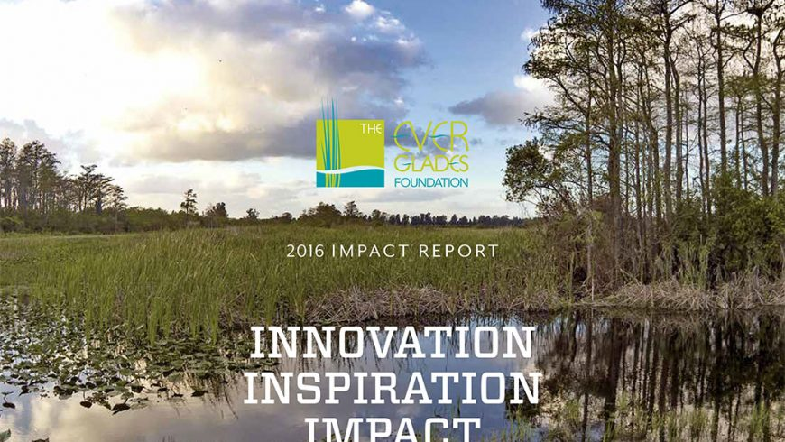 The Everglades Foundation 2016 Impact Report